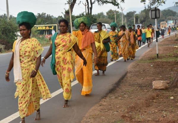 25 ஆயிரம் பக்தர்கள் மட்டுமே தினமும் பழநியில் அனுமதி
