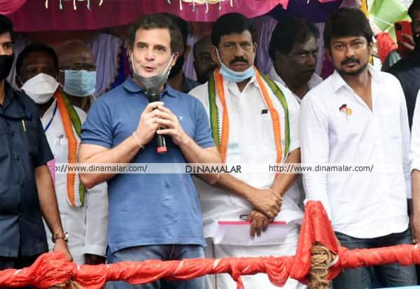 Congress,Rahul,Rahul Gandhi,காங்கிரஸ்,ராகுல்,ராகுல் காந்தி, அவனியாபுரம், ஜல்லிக்கட்டு, திமுக, தி.மு.க., உதயநிதி, உதயநிதிஸ்டாலின்
