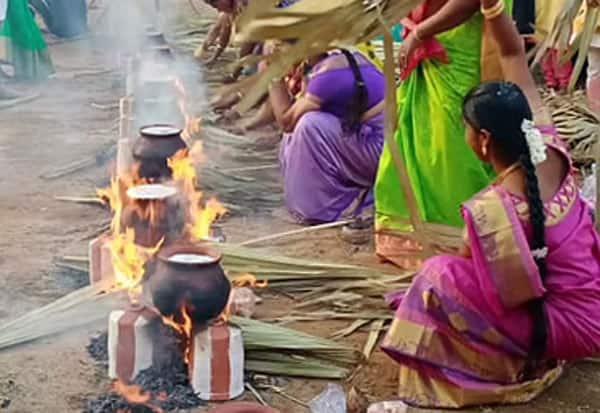 Hindu, Pongal, Tamil
