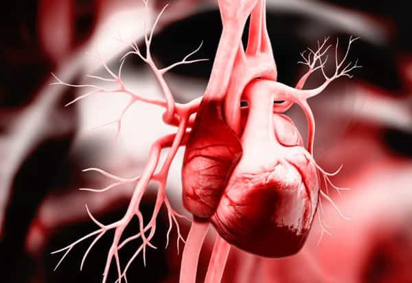 heart, accumulate, இருதயம், கட்டி, மூதாட்டி, டாக்டர்கள் சாதனை