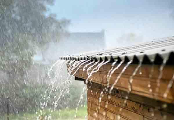 Nilgiris, Coimbatore, HeavyRain, Weather Report, நீலகிரி, கோவை, கனமழை, வானிலை