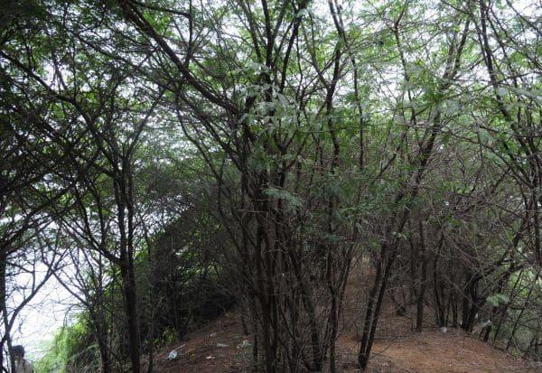 ஏரியை பராமரிக்க 4.08 கோடி