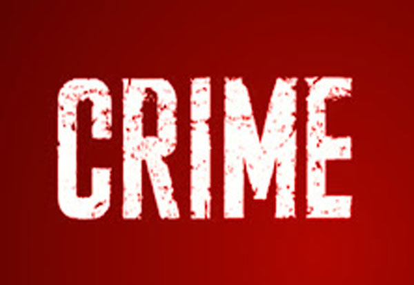 crime,murder,theft