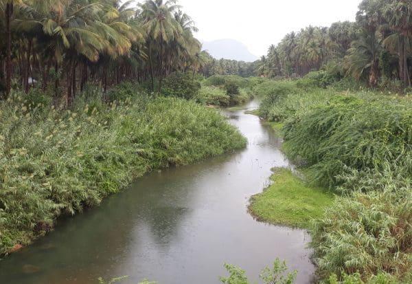 ஆறுகள் மாயம்: ஆக்கிரமிப்பால் அடையாளம் இழந்த பாலாறு:  நீர் வழித்தடங்களை மீட்க தேவை நடவடிக்கை