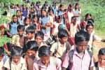 காட்டுக்குள் நடைபயணம் : 80 மாணவர்கள் பரிதாபம்