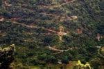 மாற்றுப்பாதை! மஞ்சூர் - கோவை இடையே மூன்றாவது...ரூ.47 கோடியில் விரைவில் செயலாக்கம்