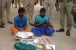 நாட்டு வெடிகுண்டுகள் பறிமுதல்: 2 பேர் கைது