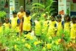 பிளாஸ்டிக் பொருட்களுக்கு, 'குட் பை':  அசத்தும் அரசு தொடக்கப் பள்ளி
