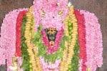 வீரட்டானேஸ்வரர் கோவிலில்  பைரவருக்கு சிறப்பு அலங்காரம்
