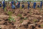 கலங்கலில் உருவாகிறது அடர்வனம்: 4,000 மரக்கன்று நட மக்கள் ஆர்வம்