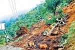 கொடைக்கானல் ரோட்டில் நிலச்சரிவு: 5 கி.மீ., நடந்து சென்ற மக்கள்