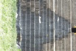 கோவில் குளத்தில் கழிவுநீர்