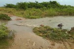 பாகூர் ஏரியில் நீர் மட்டம் உயர்வு