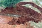 58-ம் கால்வாயில் உடைப்பு; உசிலம்பட்டி பாசனத்திற்கு சிக்கல்