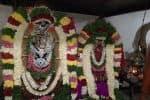 கைலாசநாதர் கோவிலில்  ஆருத்ரா தரிசனம்