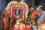 வீரட்டானேஸ்வரர் கோவிலில் ஆருத்ரா தரிசன விழா