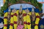 லட்சுமி நரசிம்மர் திருக்கல்யாணம்