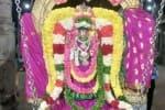வீரட்டானேஸ்வரர் கோவிலில்  அம்பாளுக்கு ஊஞ்சல் உற்சவம்