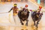 உசைன் போல்டை மிஞ்சும் வேகம்: அசர வைத்த கர்நாடக இளைஞர்