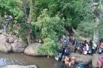 சதுரகிரியில் அமாவாசை வழிபாடு ஏராளமான பக்தர்கள் சாமி தரிசனம்