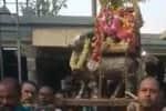 ரிஷப வாகனம் சுமந்த சிவாச்சார்யார்கள்: பிரதோஷ வழிபாட்டில் நெகிழ்ச்சி