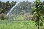 நீர் சிக்கனத்துக்கு 'ரெயின் கன்' பாசனம்: விவசாயிகள் கடைபிடிக்க 'அட்வைஸ்'