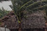 ஆம்பன் புயலுக்கு மேற்கு வங்கத்தில் 72 பேர் பலி