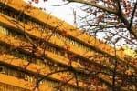 6  அதிகாரிகளுக்கு  கொரோனா: அமலாக்கத்துறை அலுவலகத்திற்கு சீல்