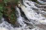 கூடலூரில் தொடரும் பருவமழை: நீர் நிலைகளில் வெள்ளப்பெருக்கு