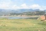 அமராவதி அணை நீர்மட்டம் உயரவில்லை: நெல் சாகுபடி துவக்காத விவசாயிகள்