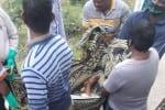 காயமடைந்த மூதாட்டி உயிரிழப்பு : கொரோனா சீல் வைத்த இடத்தில் சோகம்