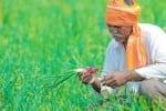 மிசோரமில் 5000 பேருக்கு வேலை வாய்ப்பு வழங்கும் உணவு பூங்கா திட்டம்