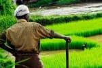 விவசாயிகளின் வருவாயை அதிகரிக்கும் 3 மசோதாக்கள் லோக்சபாவில் தாக்கல்