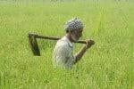 மத்திய பிரதேசத்தில் விவசாய உபகரணம் வாங்கியதில் முறைகேடு