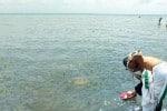 முன்னோரை  வணங்குவோம் : இன்று மகாளய அமாவாசை