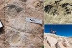 சவுதியில் 1,20,000 ஆண்டுகளுக்கு முந்தைய மனித கால்தடங்கள் கண்டுபிடிப்பு