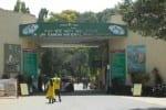 வனவிலங்கு சரணாலயங்கள்:  மஹா. , வில் அக். , 1 முதல் சுற்றுலா பயணிகளுக்கு அனுமதி