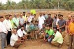 'மியாவாகி' முறையில், 800 மரக்கன்று நடவு