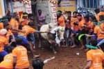 அவனியாபுரத்தில் சீறிப்பாய்ந்த காளைகள் ; வீறுகொண்ட வீரர்கள்