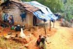 'ஆட்சிகள் மாறினாலும் காட்சிகள் மாறவில்லை': முன்னேற்றமில்லாத பழங்குடியினர் வாழ்க்கை