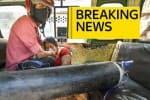 டில்லியில் பதட்டம்:  ஆக்ஸிஜன் பற்றாக்குறை ; ஆபத்து கட்டத்தில் 60 நோயாளிகள்