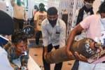 கர்நாடகாவில் ஆக்சிஜன் பற்றாக்குறையால் 24 பேர் பலி
