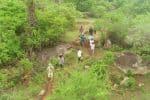 'ட்ரோன் கேமரா' வாயிலாக கண்காணிப்பு: சாராயம் காய்ச்சுவதை தடுக்க நடவடிக்கை