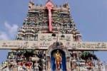 சமூக நலத்துறை அலட்சியத்தால் வடபழநி கோவில் நிலம் ஆக்கிரமிப்பு