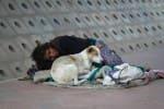 வீடற்ற, மனநலம் பாதிக்கப்பட்டோருக்கு உதவும் புதிய திட்டம்: சென்னையில் துவக்கம்