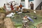 ஊசுட்டேரி கருத்து விளக்க மையம் பார்வையாளர்களுக்கு திறக்க முடிவு