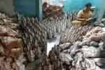விநாயகர் சிலை செய்யும் தொழிலாளர்கள்  ஏமாற்றம்   பொது இடங்களில் வழிபட தமிழக அரசு தடை