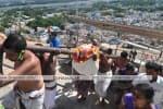 விநாயகர் சதுர்த்தி கொண்டாட்டம்