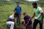 வெங்கத்துார் ஏரியில் 1,250 பனை விதை நடவு