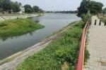 சித்தேரியில் மீண்டும் கழிவு நீர் கலப்பு   கோடிக்கணக்கில் வரிப்பணம் வீணடிப்பு